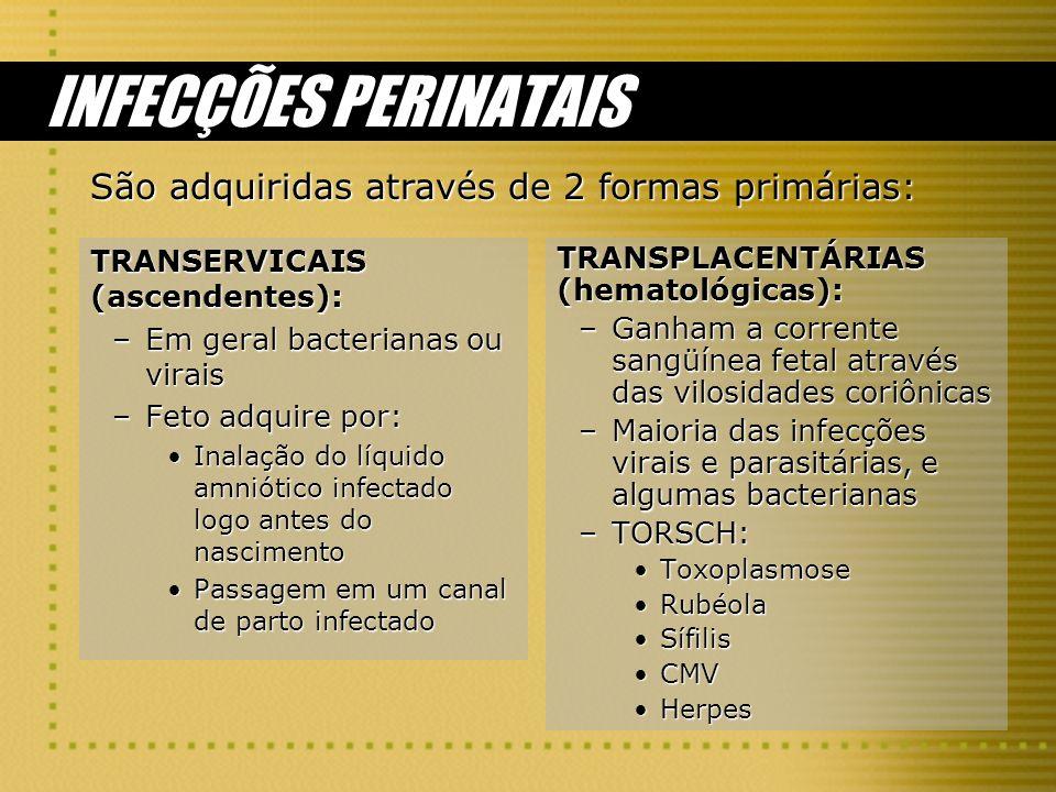 INFECÇÕES PERINATAIS São adquiridas através de 2 formas primárias: