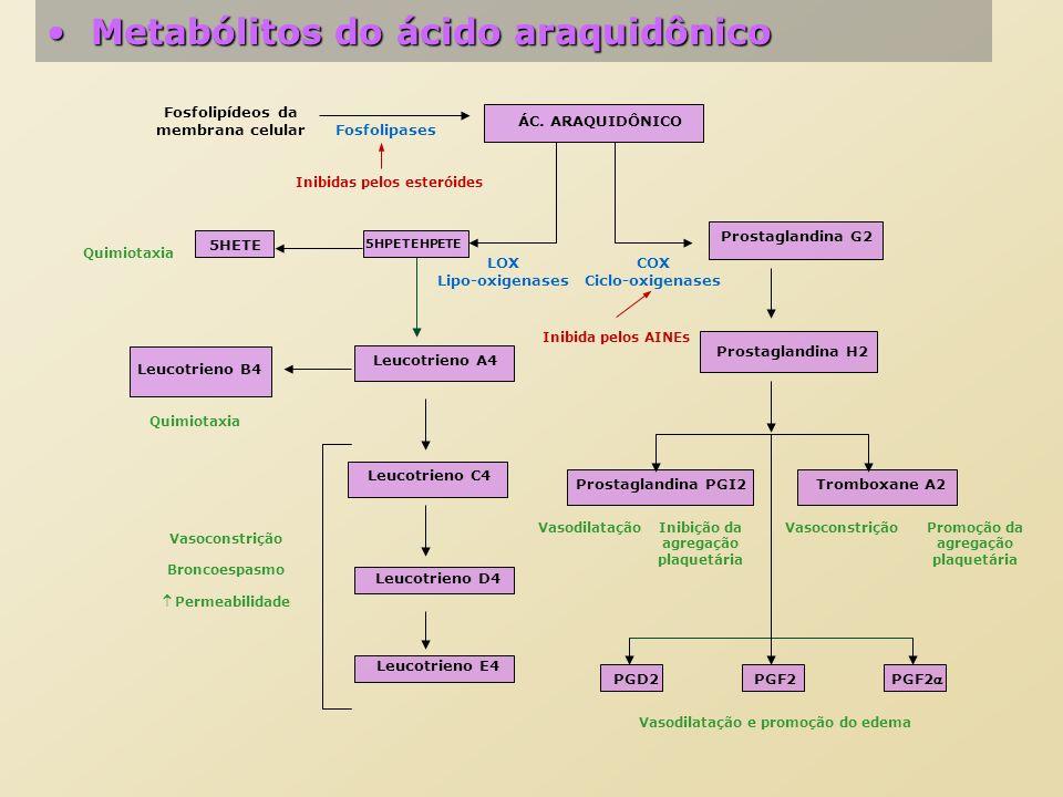 Metabólitos do ácido araquidônico