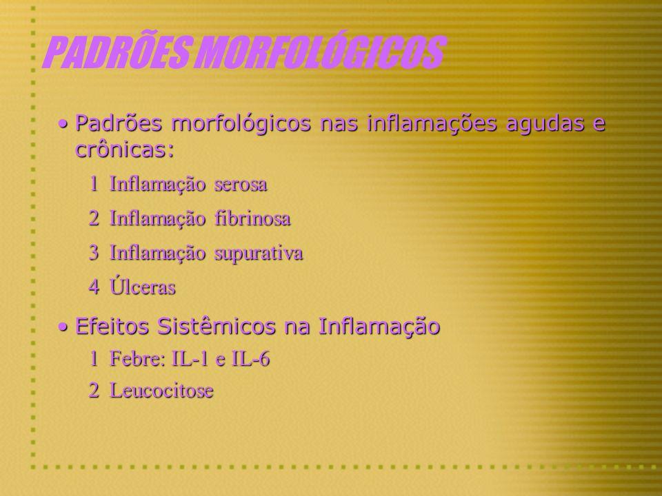 PADRÕES MORFOLÓGICOS Padrões morfológicos nas inflamações agudas e crônicas: Inflamação serosa. Inflamação fibrinosa.