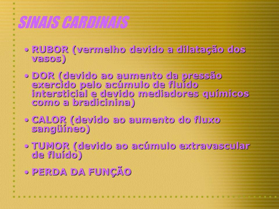 SINAIS CARDINAIS RUBOR (vermelho devido a dilatação dos vasos)