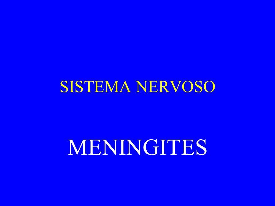 SISTEMA NERVOSO MENINGITES