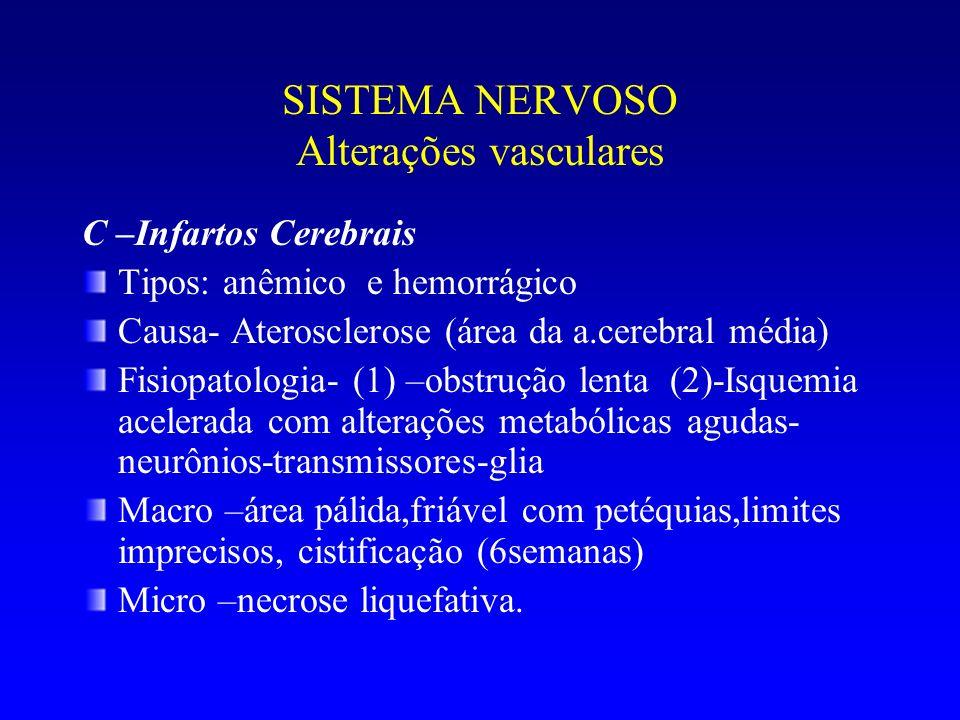 SISTEMA NERVOSO Alterações vasculares