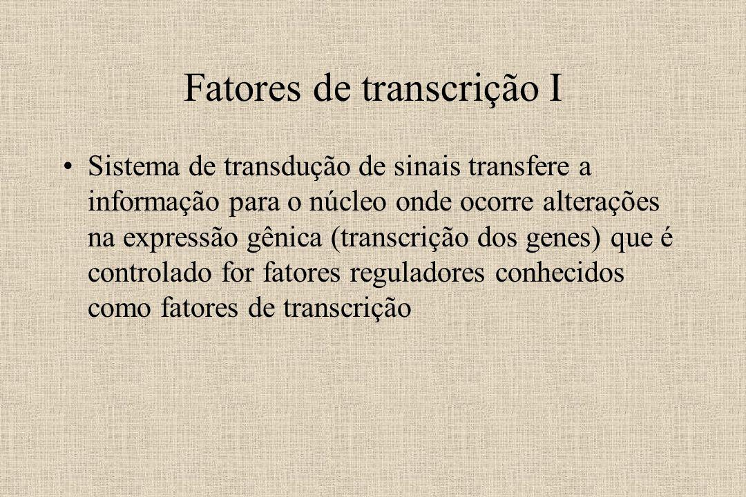 Fatores de transcrição I