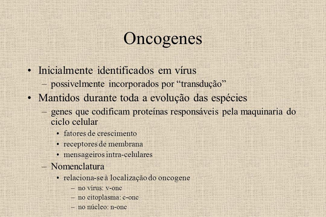 Oncogenes Inicialmente identificados em vírus