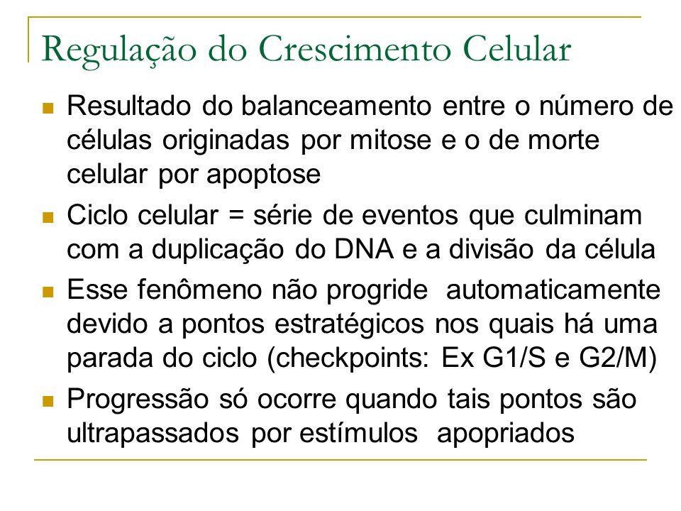 Regulação do Crescimento Celular