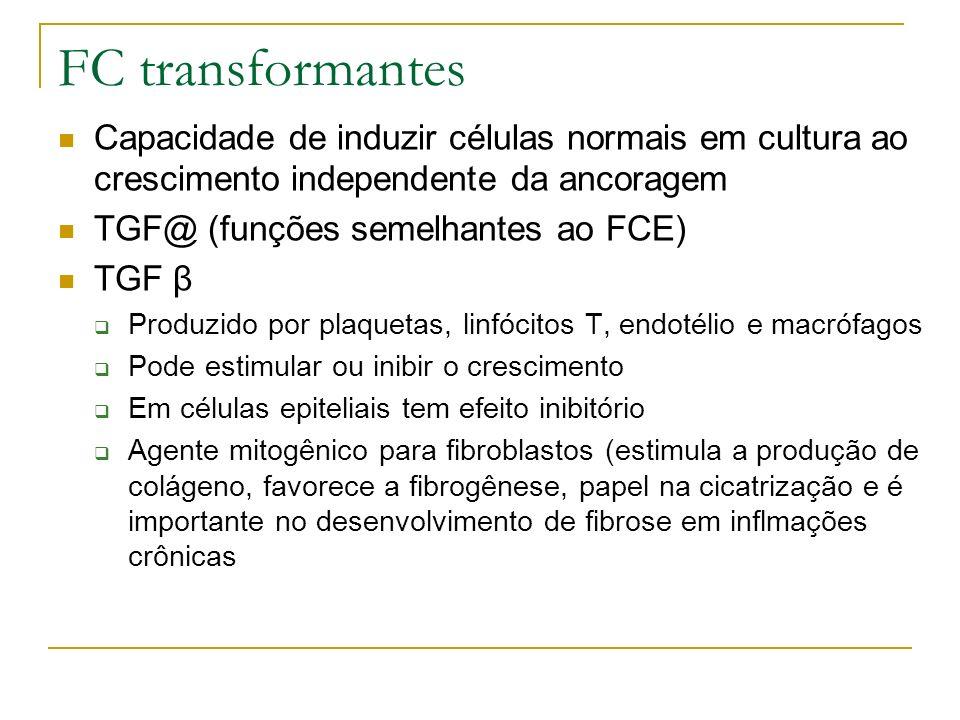 FC transformantes Capacidade de induzir células normais em cultura ao crescimento independente da ancoragem.
