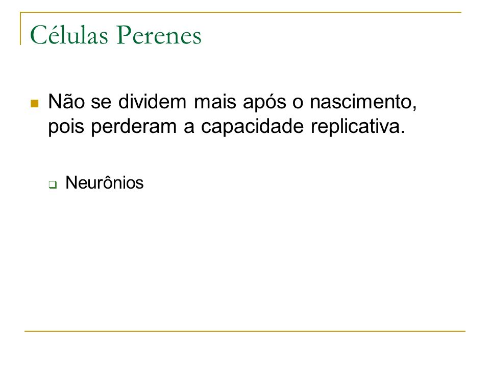 Células Perenes Não se dividem mais após o nascimento, pois perderam a capacidade replicativa.