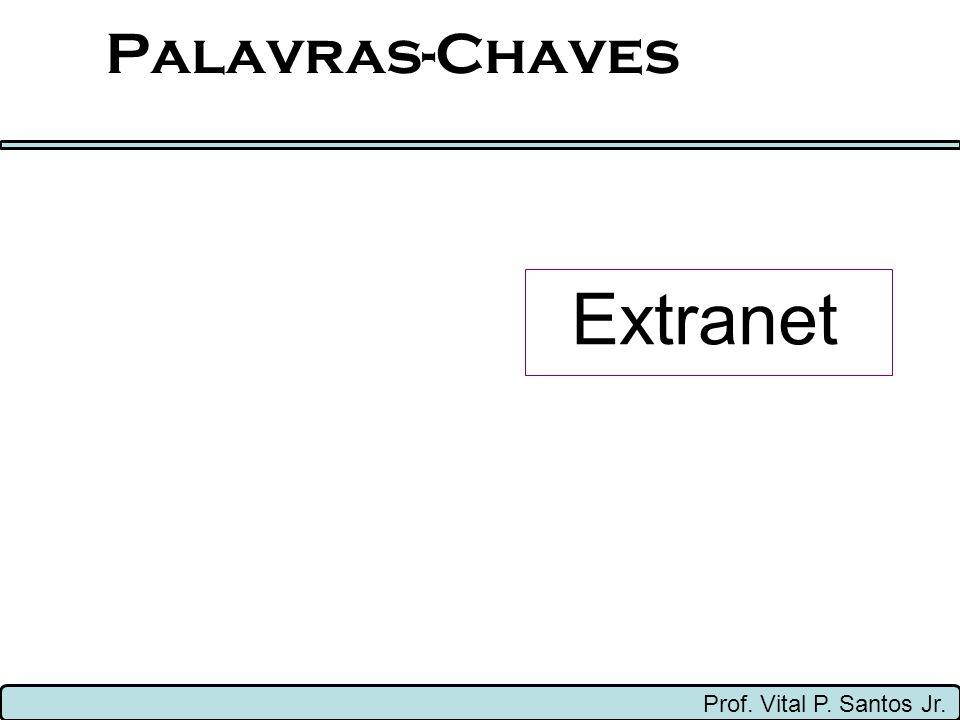 Palavras-Chaves Extranet Prof. Vital P. Santos Jr.
