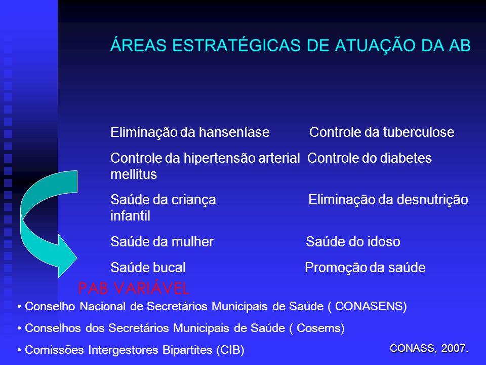 ÁREAS ESTRATÉGICAS DE ATUAÇÃO DA AB