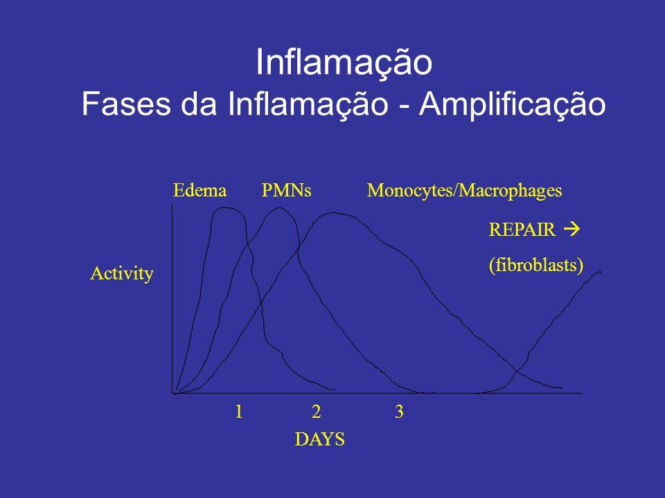 Inflamação Fases da Inflamação - Amplificação