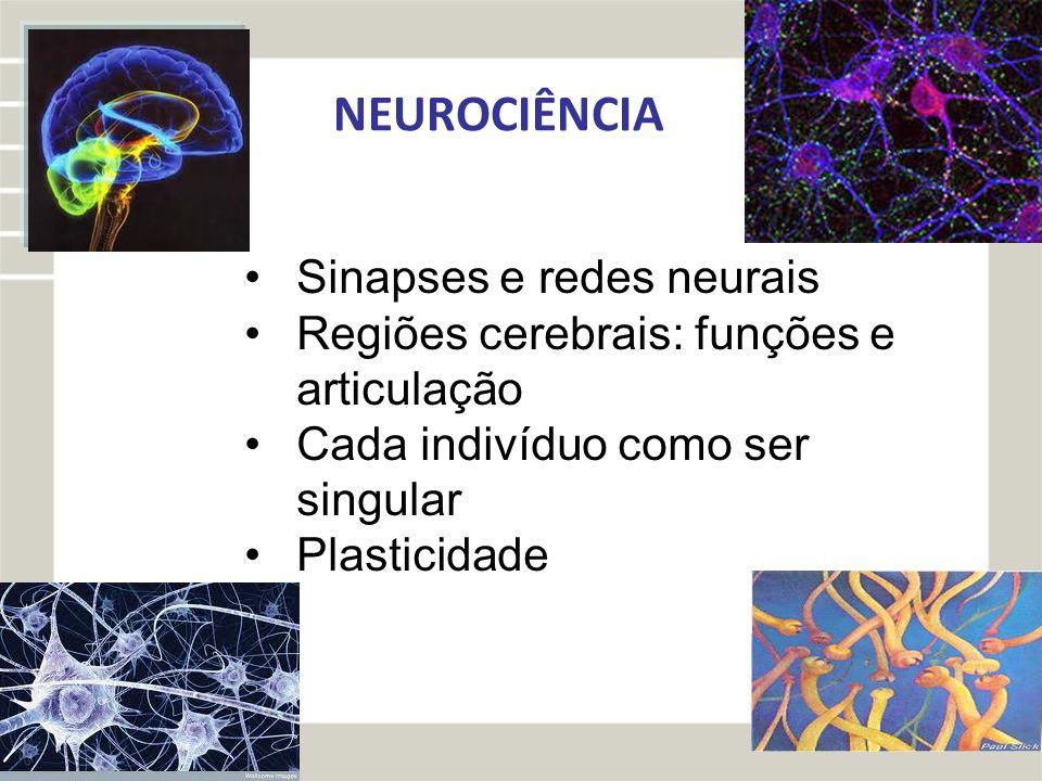 NEUROCIÊNCIA Sinapses e redes neurais