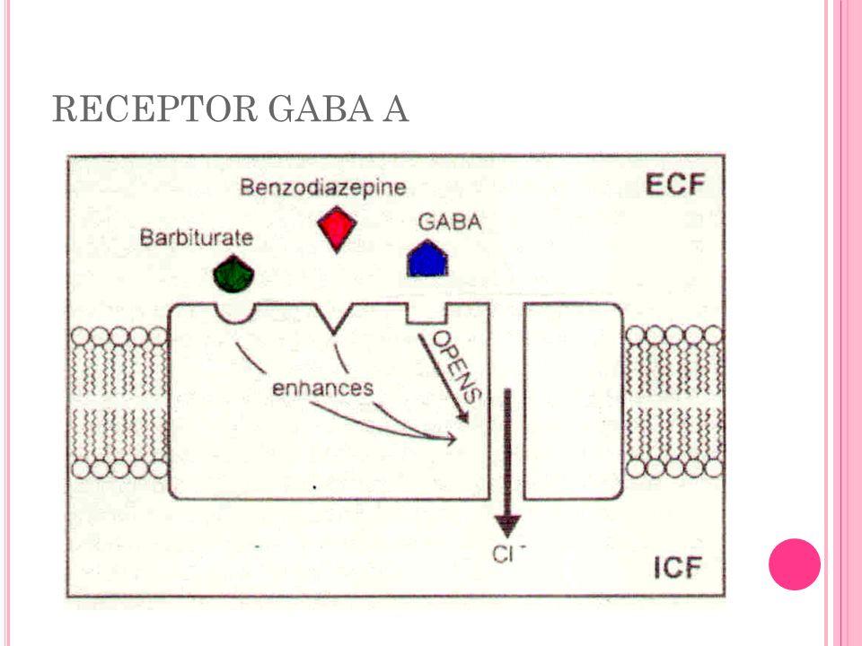 RECEPTOR GABA A