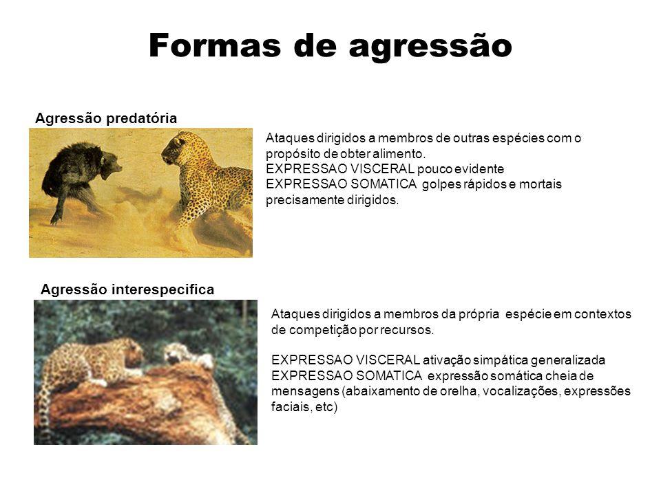 Formas de agressão Agressão predatória Agressão interespecifica