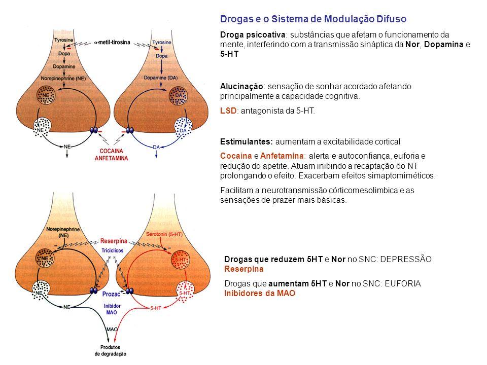 Drogas e o Sistema de Modulação Difuso