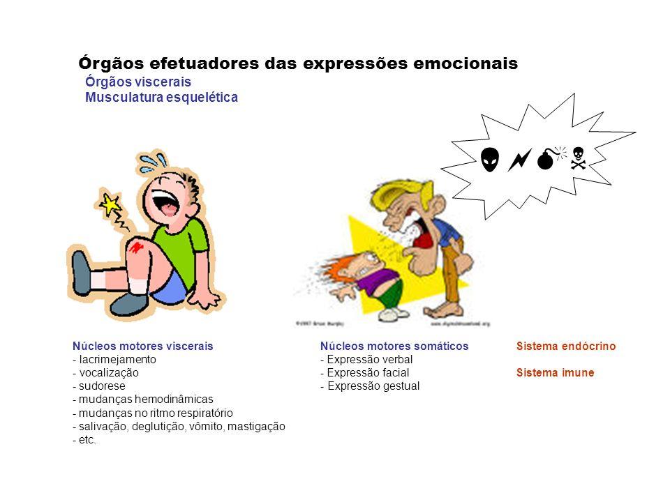  Órgãos efetuadores das expressões emocionais Órgãos viscerais
