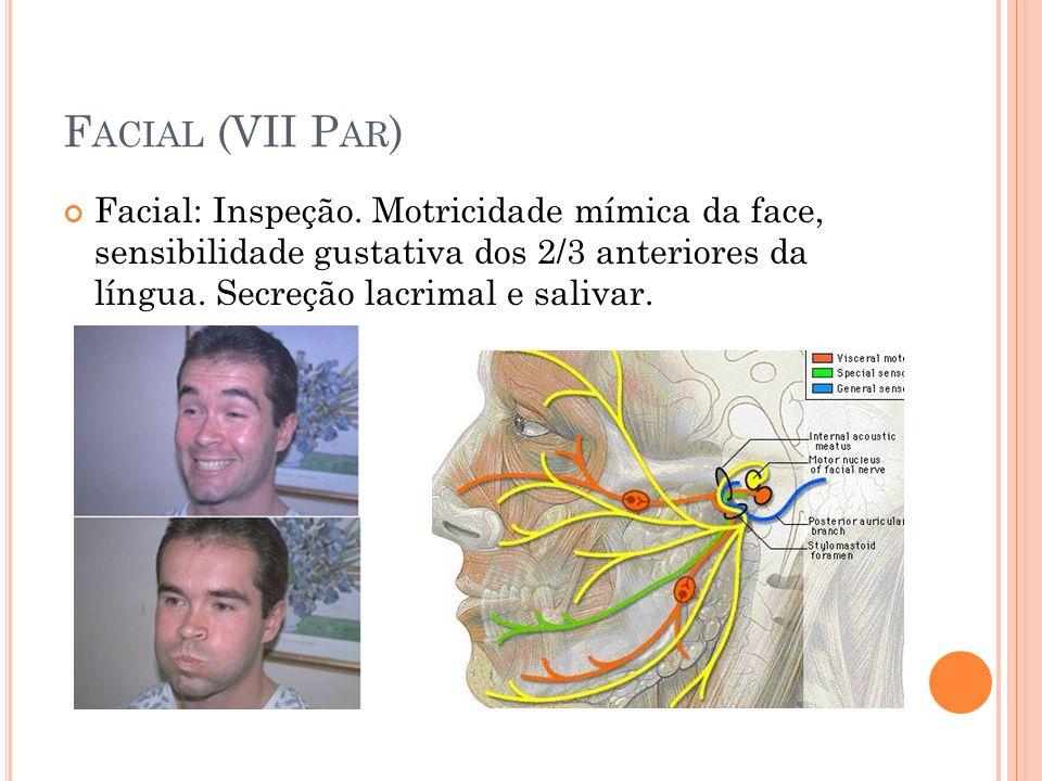 Facial (VII Par) Facial: Inspeção.
