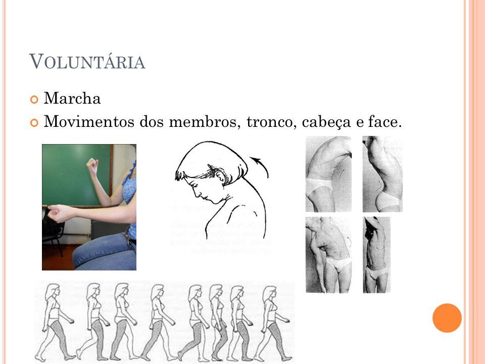 Voluntária Marcha Movimentos dos membros, tronco, cabeça e face.