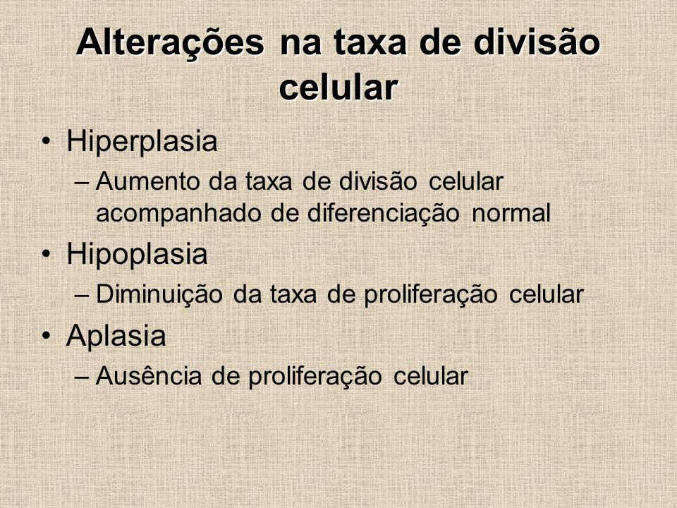 Alterações na taxa de divisão celular