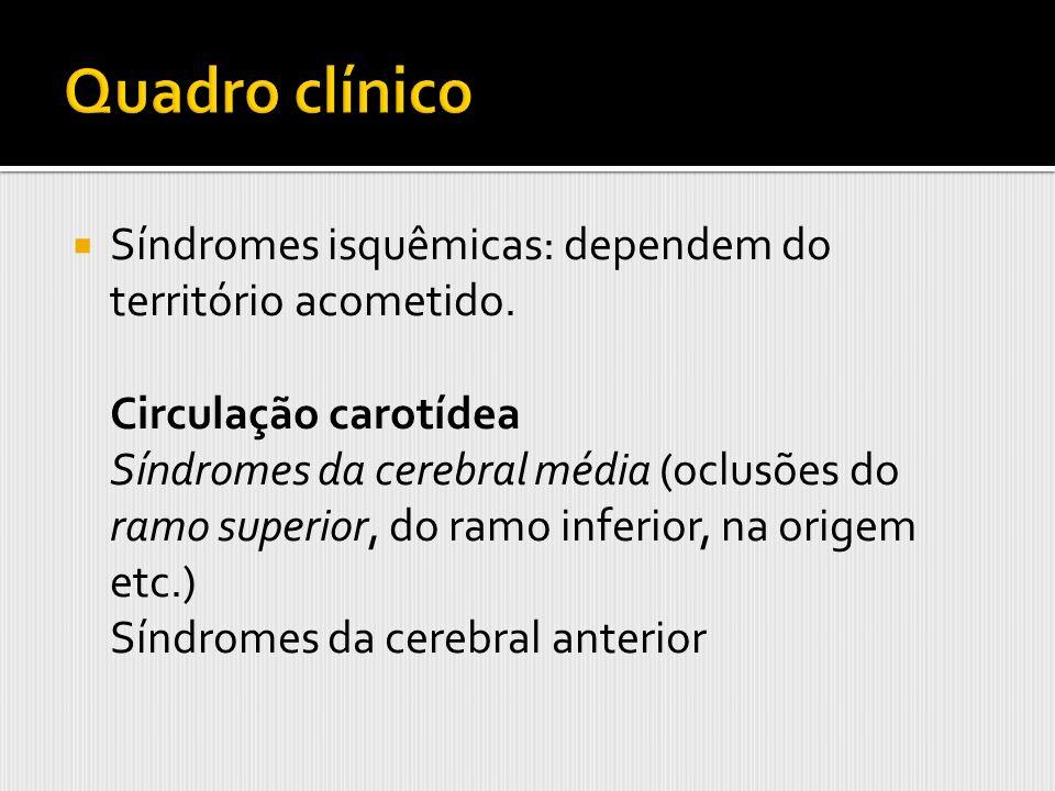Quadro clínico Síndromes isquêmicas: dependem do território acometido.