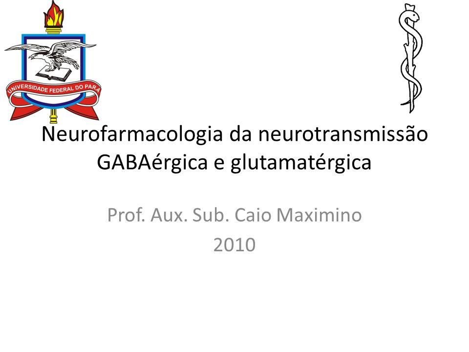 Neurofarmacologia da neurotransmissão GABAérgica e glutamatérgica