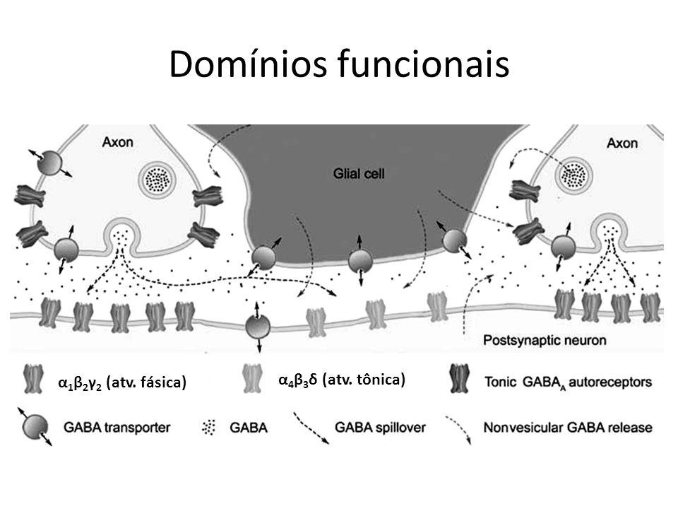 Domínios funcionais α1β2γ2 (atv. fásica) α4β3δ (atv. tônica)