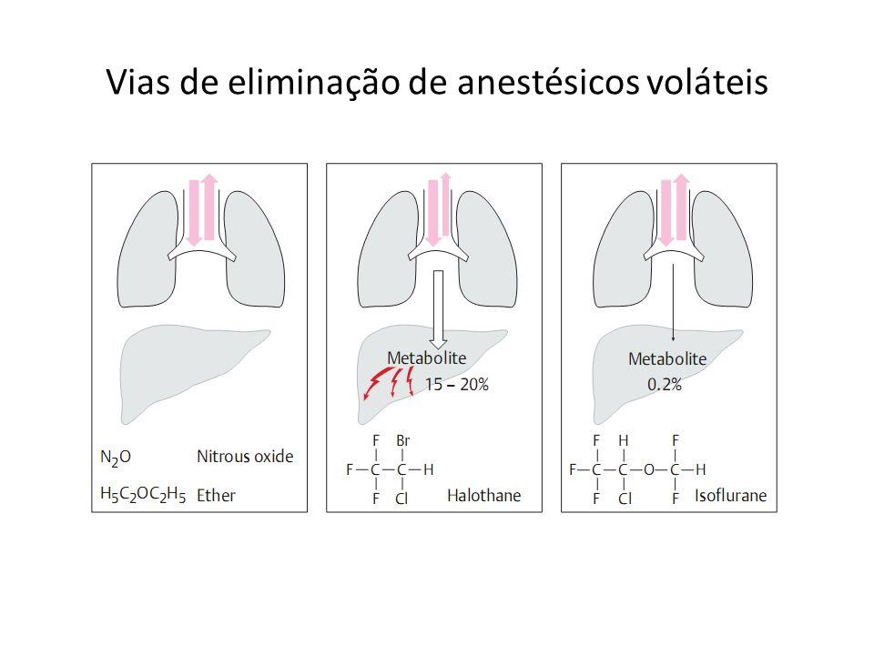 Vias de eliminação de anestésicos voláteis