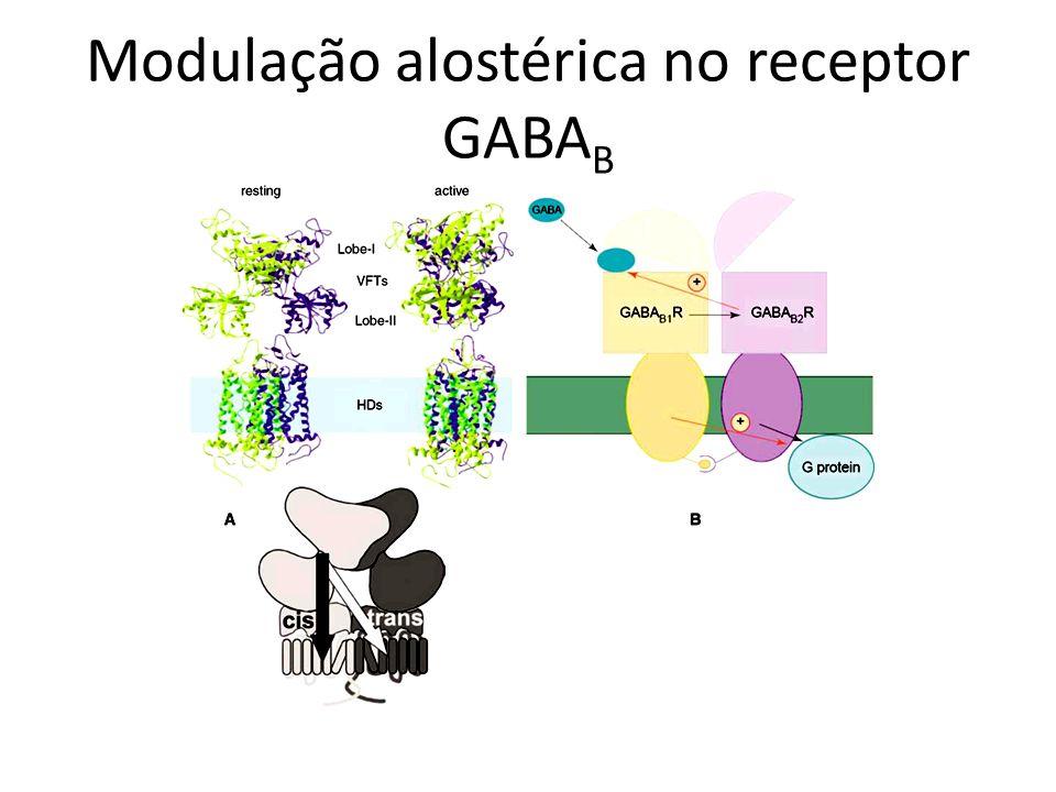 Modulação alostérica no receptor GABAB