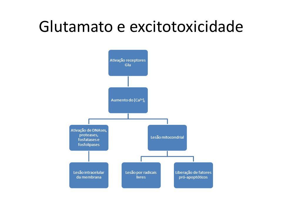 Glutamato e excitotoxicidade