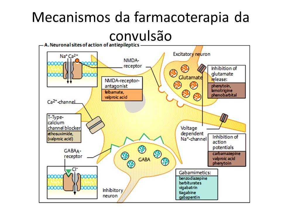 Mecanismos da farmacoterapia da convulsão