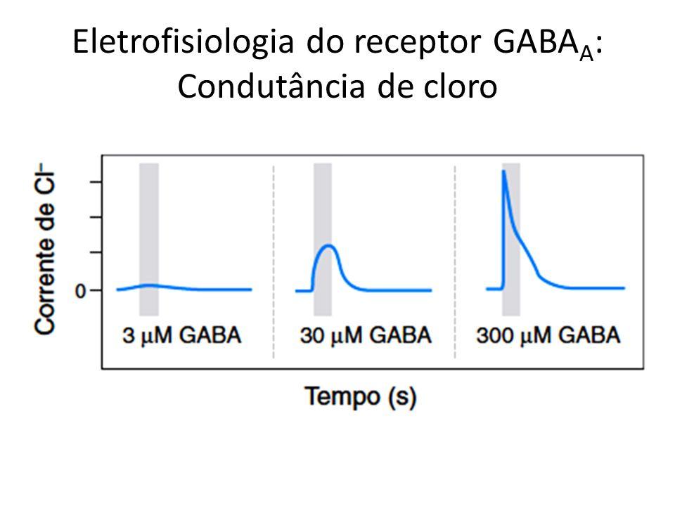 Eletrofisiologia do receptor GABAA: Condutância de cloro