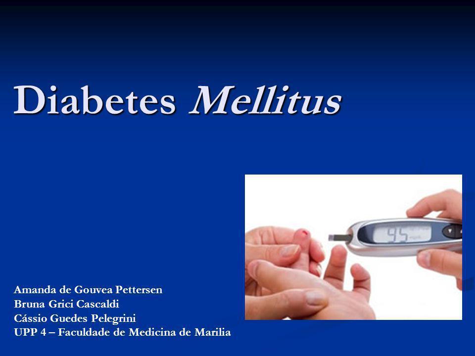 Diabetes Mellitus Amanda de Gouvea Pettersen Bruna Grici Cascaldi