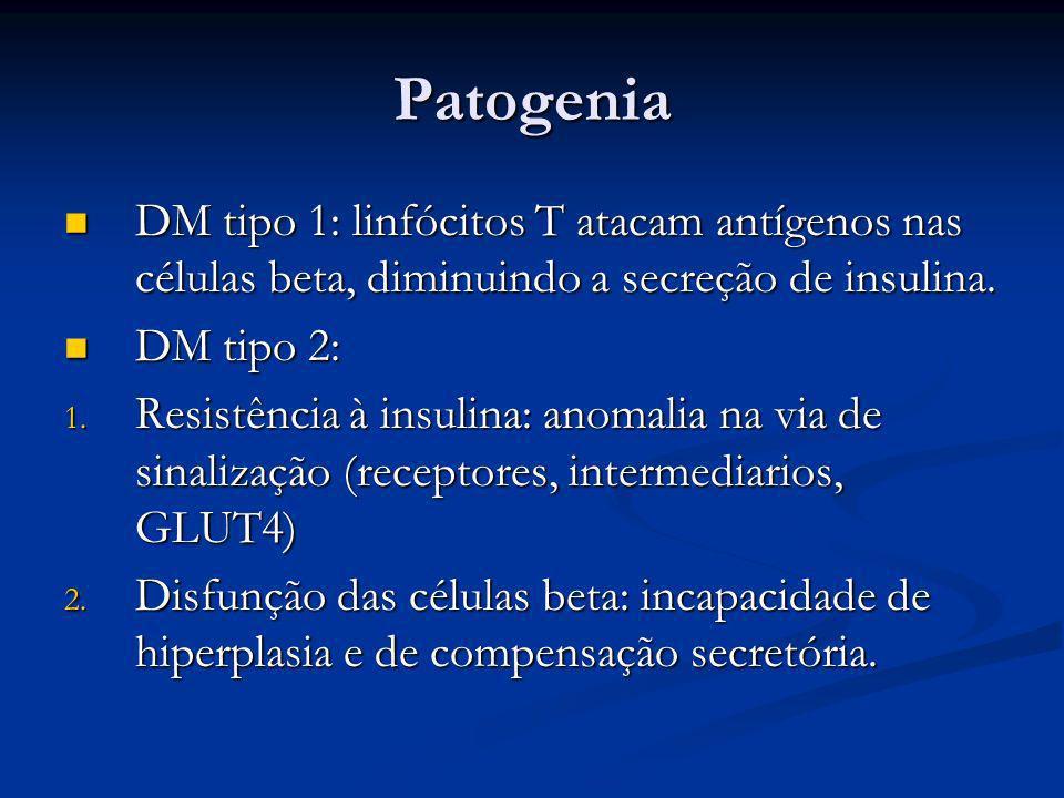 PatogeniaDM tipo 1: linfócitos T atacam antígenos nas células beta, diminuindo a secreção de insulina.