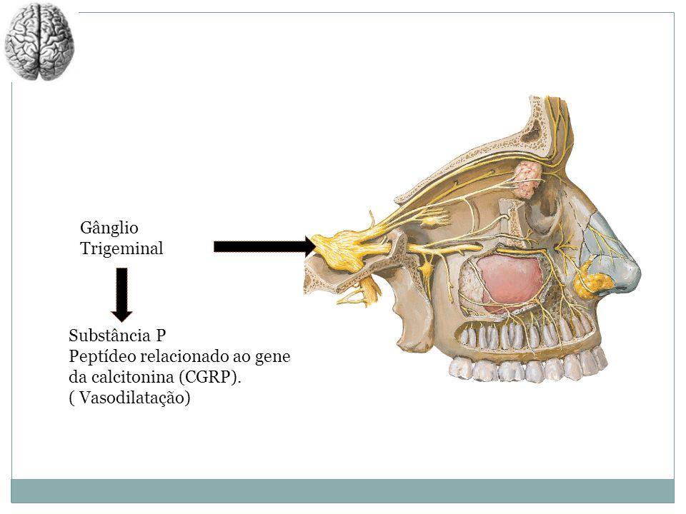 Gânglio TrigeminalSubstância P.Peptídeo relacionado ao gene da calcitonina (CGRP).