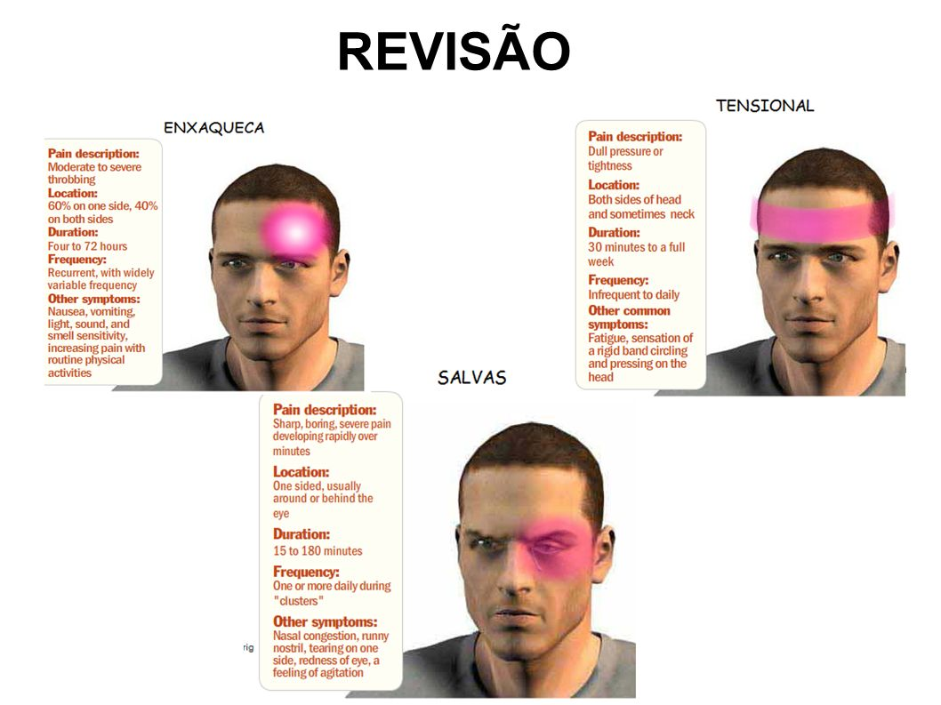 REVISÃOREVISÃO 41