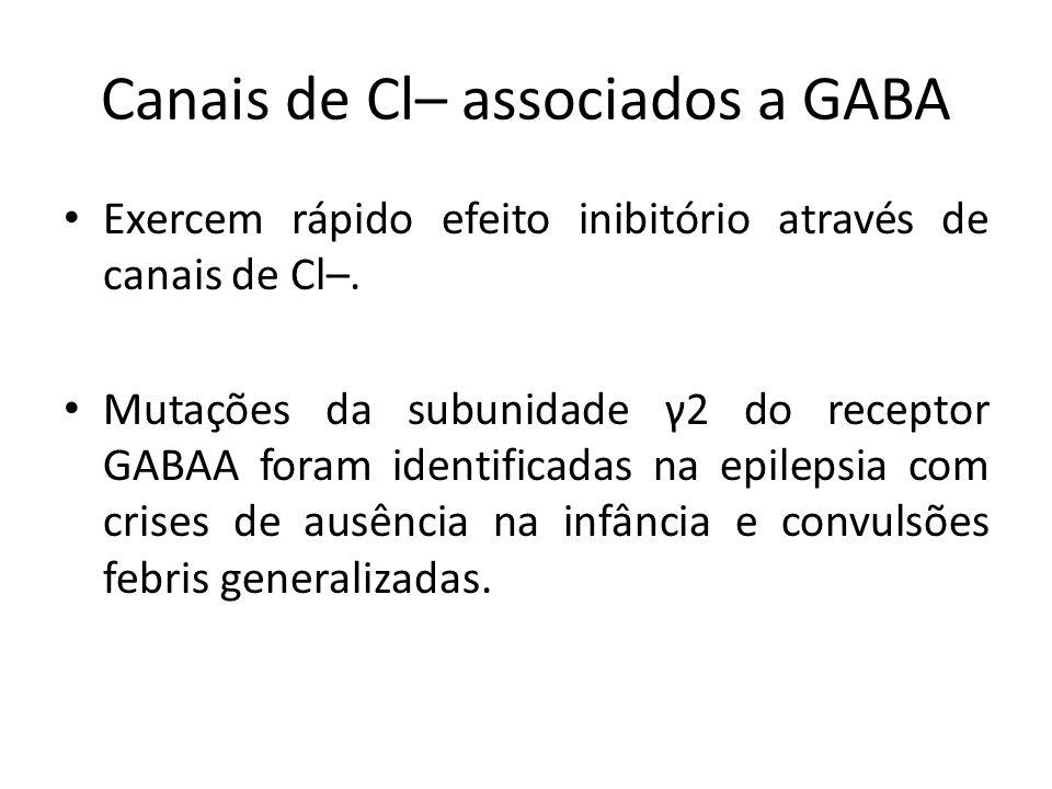 Canais de Cl– associados a GABA
