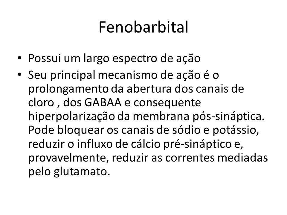 Fenobarbital Possui um largo espectro de ação