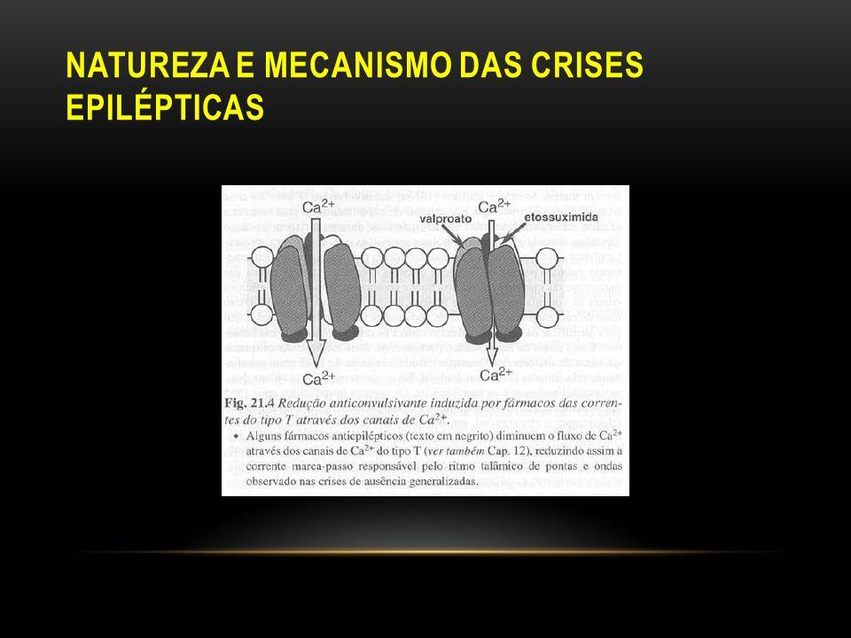 Natureza e mecanismo das Crises Epilépticas