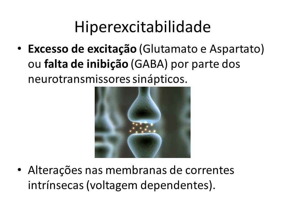 Hiperexcitabilidade Excesso de excitação (Glutamato e Aspartato) ou falta de inibição (GABA) por parte dos neurotransmissores sinápticos.