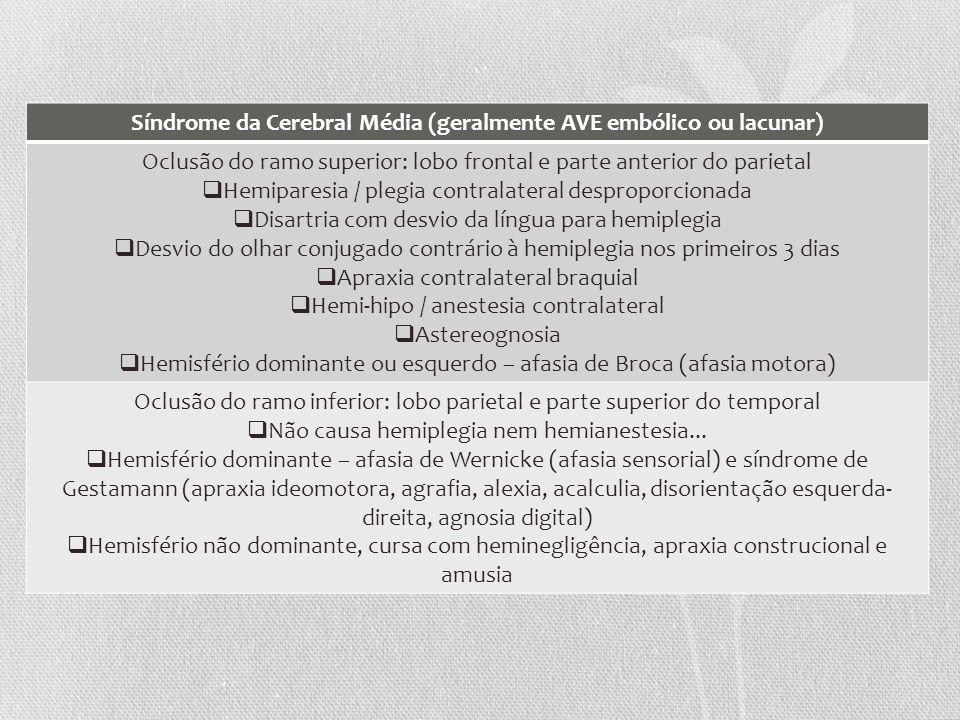 Síndrome da Cerebral Média (geralmente AVE embólico ou lacunar)