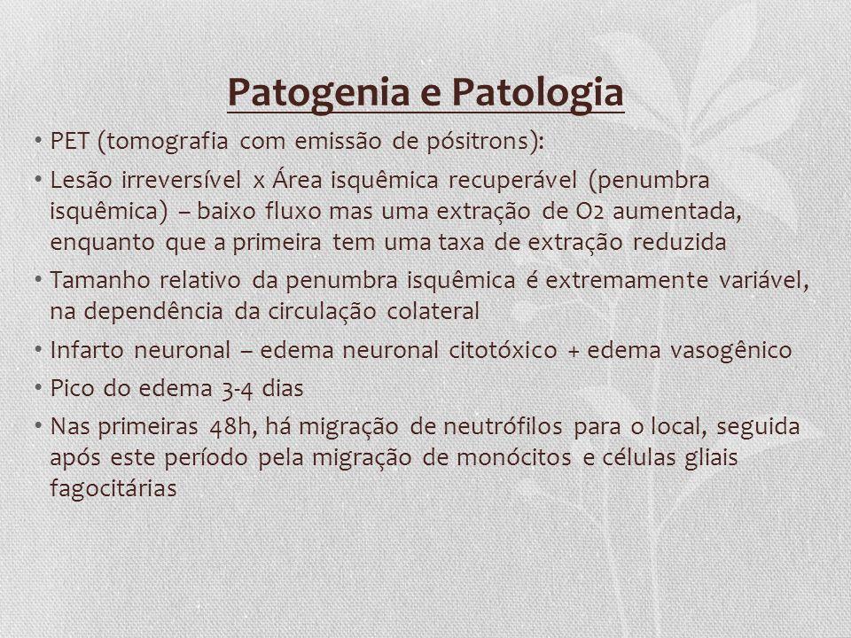 Patogenia e Patologia PET (tomografia com emissão de pósitrons):