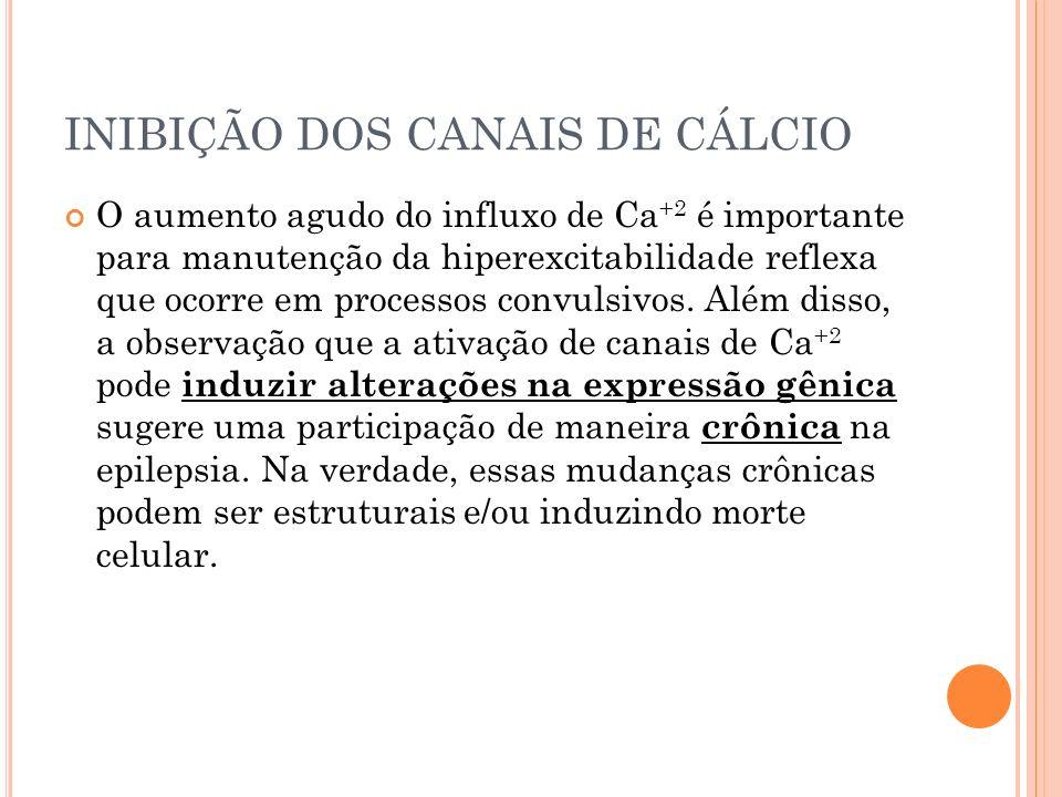 INIBIÇÃO DOS CANAIS DE CÁLCIO