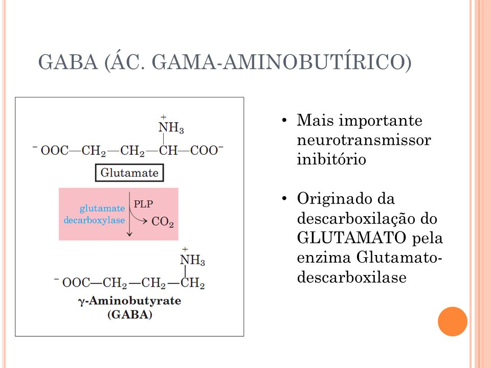 GABA (ÁC. GAMA-AMINOBUTÍRICO)