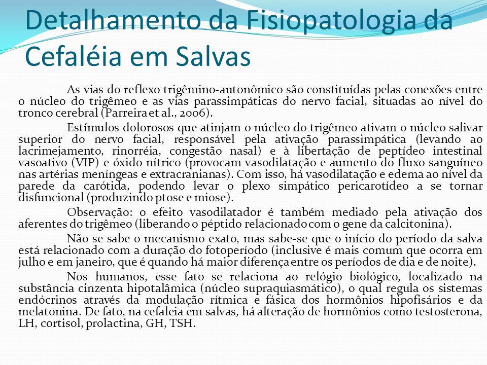 Detalhamento da Fisiopatologia da Cefaléia em Salvas