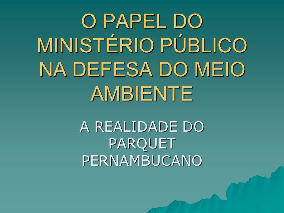 O PAPEL DO MINISTÉRIO PÚBLICO NA DEFESA DO MEIO AMBIENTE