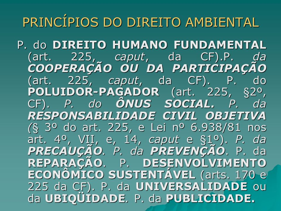 PRINCÍPIOS DO DIREITO AMBIENTAL
