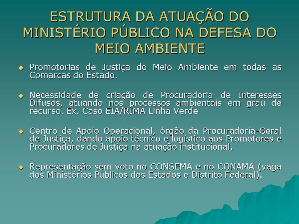 ESTRUTURA DA ATUAÇÃO DO MINISTÉRIO PÚBLICO NA DEFESA DO MEIO AMBIENTE