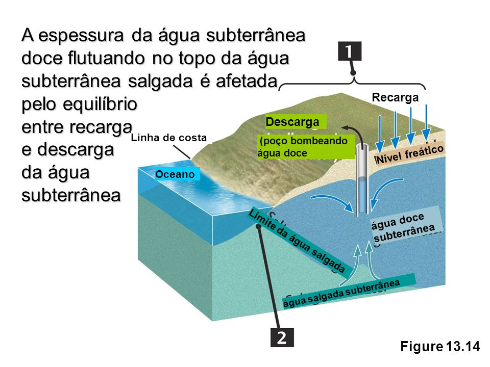 A espessura da água subterrânea doce flutuando no topo da água subterrânea salgada é afetada pelo equilíbrio