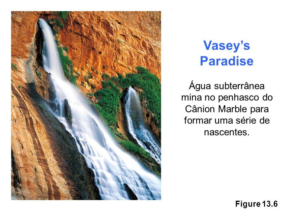 Vasey's Paradise Água subterrânea mina no penhasco do Cânion Marble para formar uma série de nascentes.