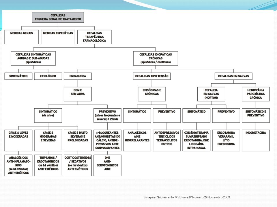 Sinapse. Suplemento 1/ Volume 9/ Numero 2/ Novembro 2009