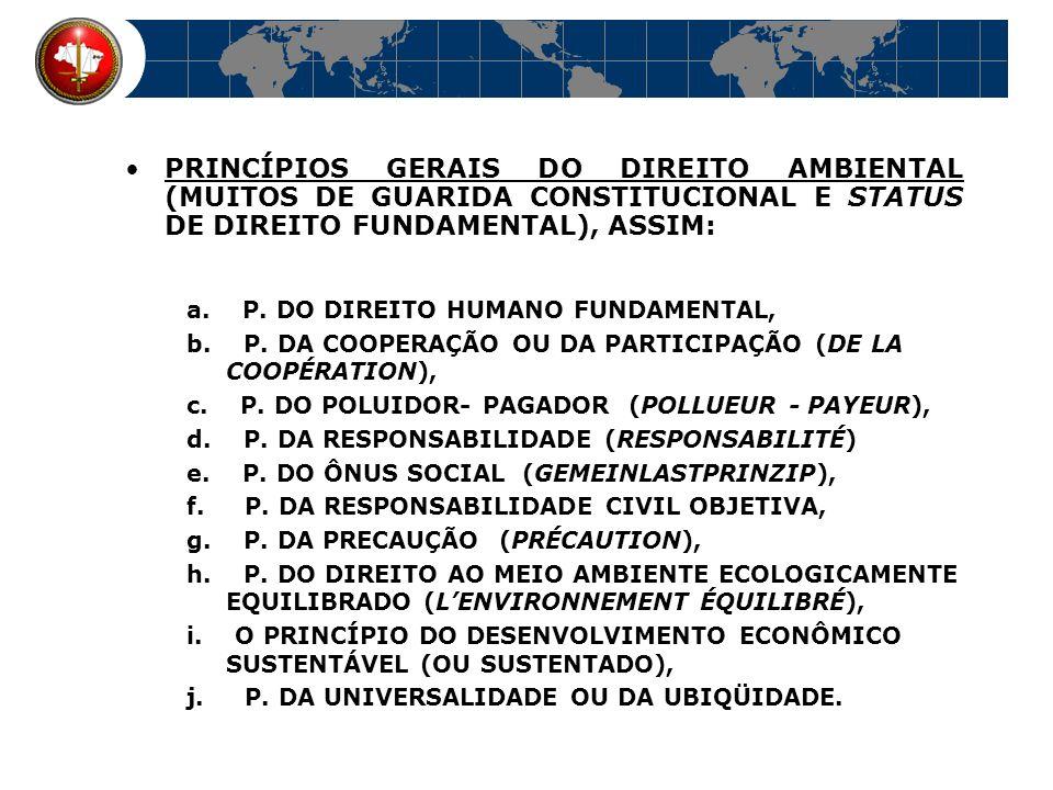 PRINCÍPIOS GERAIS DO DIREITO AMBIENTAL (MUITOS DE GUARIDA CONSTITUCIONAL E STATUS DE DIREITO FUNDAMENTAL), ASSIM: